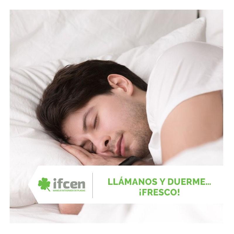 Duerme tranquilo eliminando las chinches