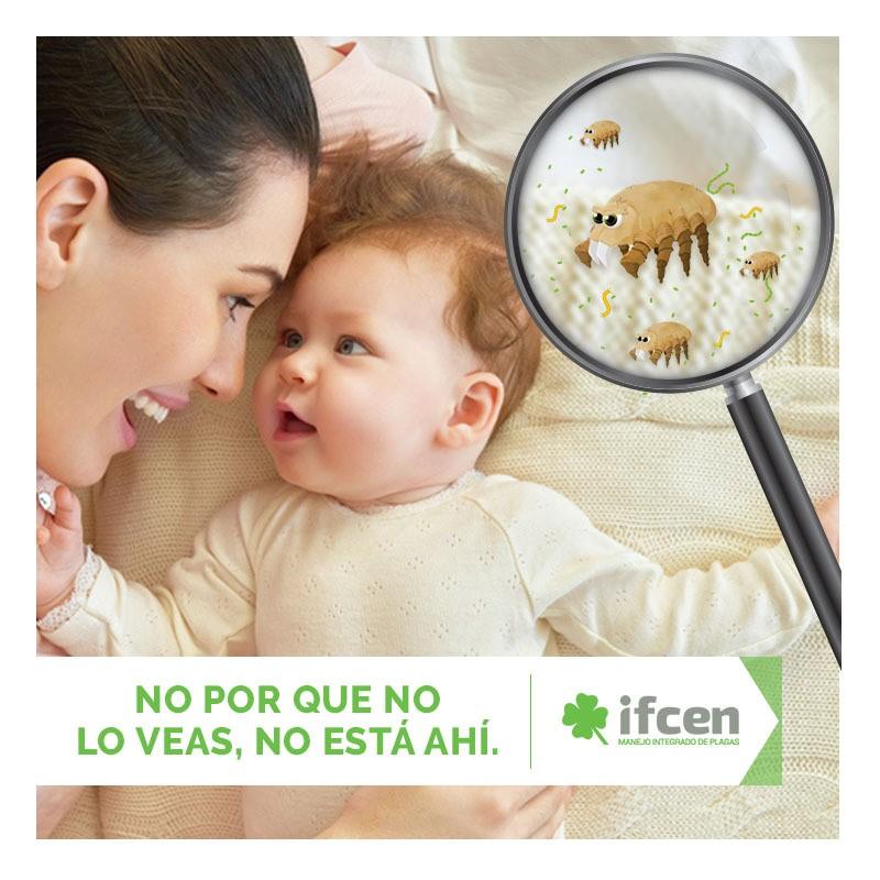 Localización de infestación de chinches con IFCEN