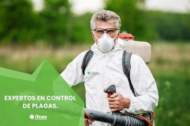 Empresa de fumigación IFCEN, expertos en control de plagas